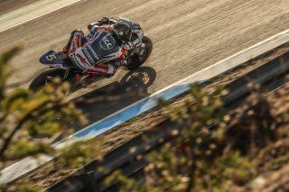 Ewc_12_H_Estoril_2020_National Motos, Egea Stéphane, Antiga Guillaume, Honda CBR 1000RR, Formula EWC