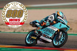 Masia 800 wins